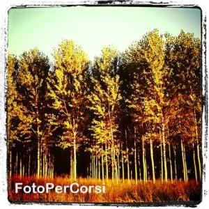 14092013_Tornavento settembre (18)