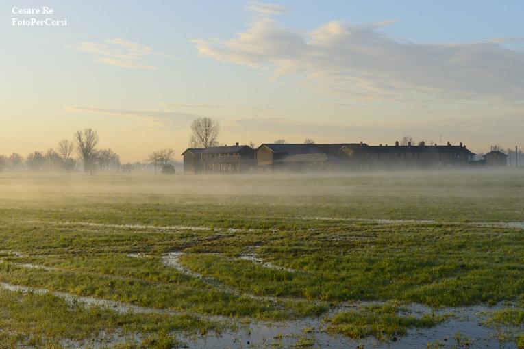 Atmosfere invernali, per questo scatto alle marcite di Casterno, nel Parco del Ticino. La stagione fredda, in questo caso, differenzia moltissimo lo scatto da un'immagine, per esempio, estiva o primaverile. Importante anche l'orario di prima mattina. Nikon D800; Nikkor 24-70 2,8 AFS.