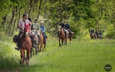 A cavallo com fotopercorsi e natura e avventura, fotografia e cavallo