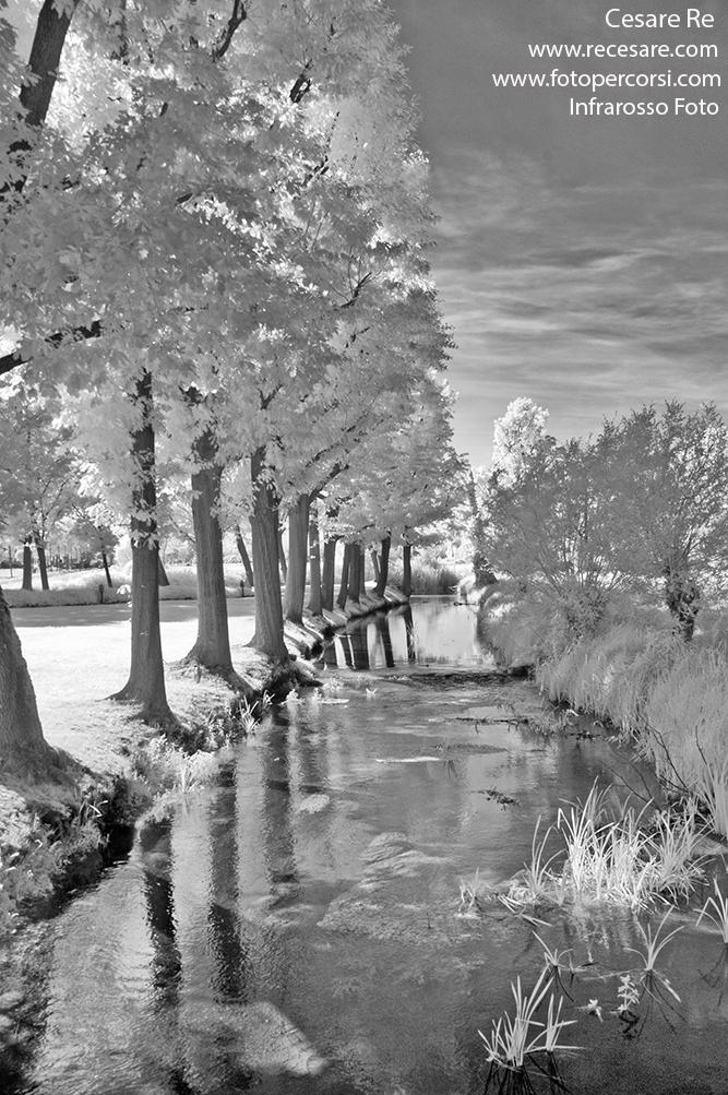 Canale alberato con luce infrarosso