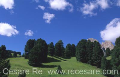 montagna cesare re foto percorsi (19)
